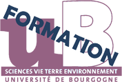 logo svte formation small