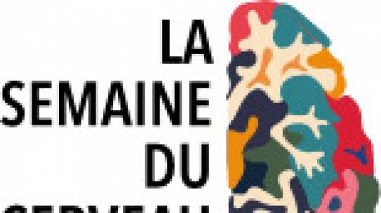 La semaine du cerveau, les chercheurs en neurosciences de Dijon se mobilisent!